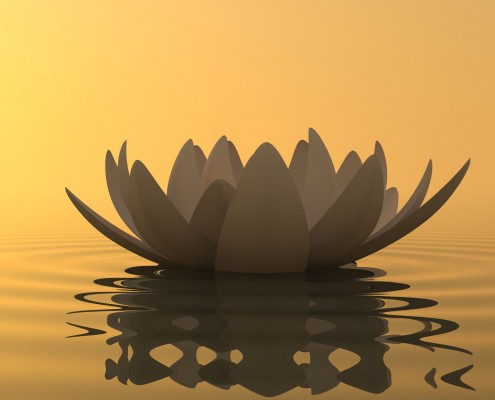 meditation-lotus